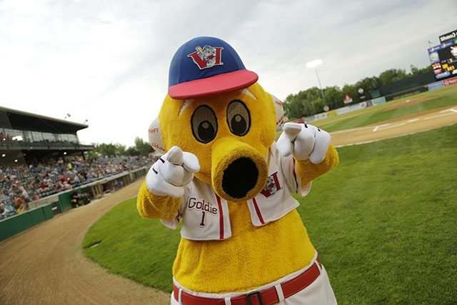 Goldeyes Annual Open House May 7th